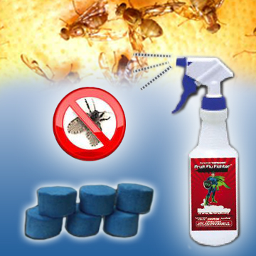 Fruit Fly Solutions